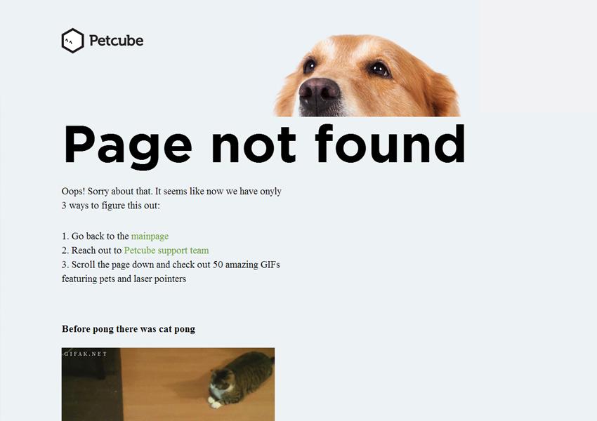 страница ошибки 404 page not found проекта Petcube